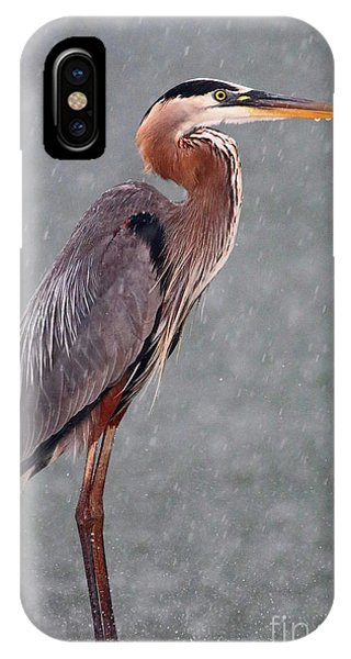 Great Blue In The Rain IPhone Case
