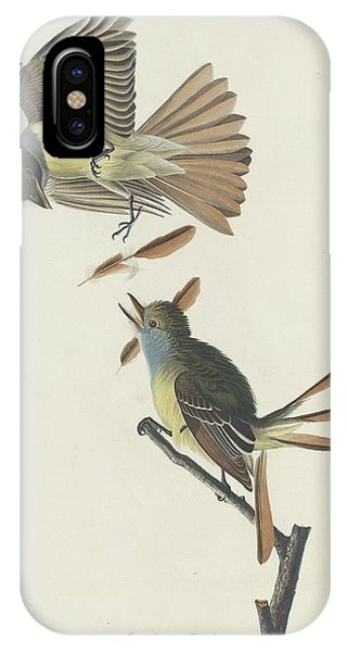 Flycatcher iPhone Case - Great Crested Flycatcher by Dreyer Wildlife Print Collections
