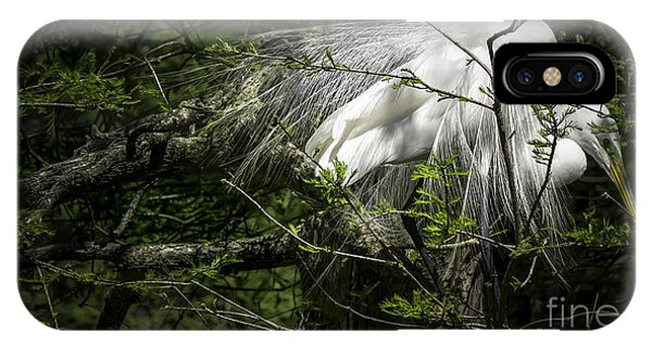 Great Egret #2 IPhone Case