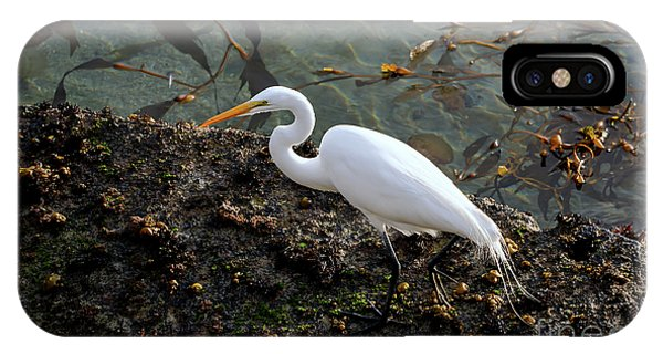 Great Egret At A Low Tide IPhone Case
