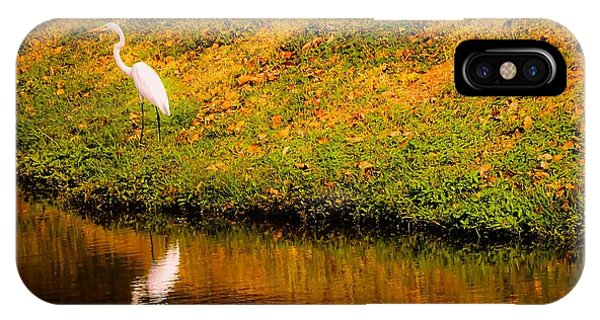 Great Egret At The Lake IPhone Case