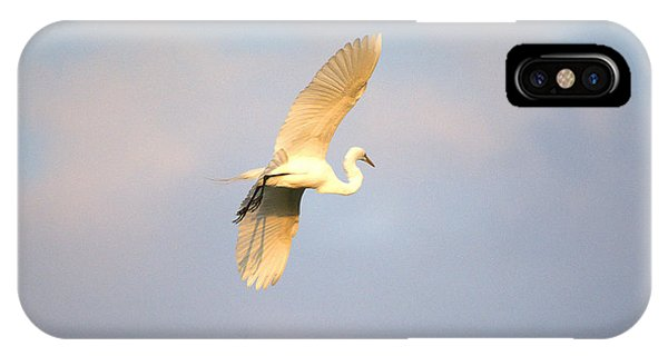 Great Egret Bathed In Golden Sunlight IPhone Case