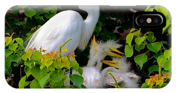 Great Egret Family Phone Case by Lindy Pollard