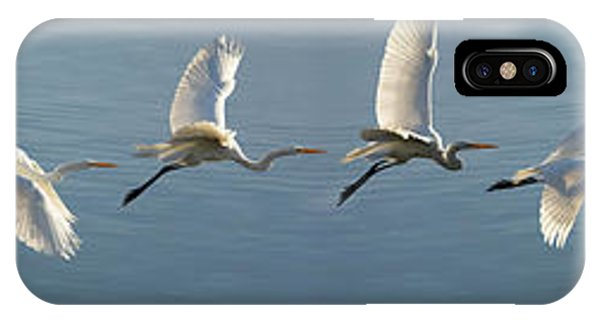 Great Egret Flight Sequence IPhone Case