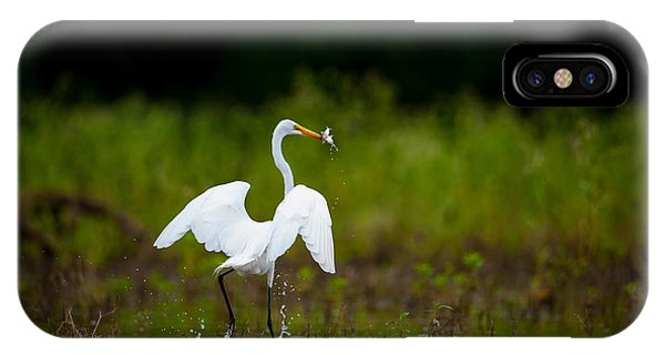 Great Egret, Great Fisherman IPhone Case