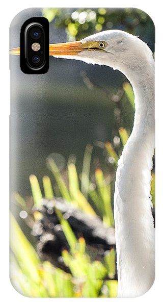 Great Egret Headshot Profile  IPhone Case