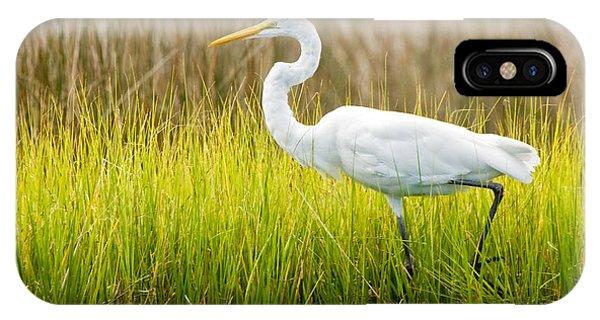 Great Egret In Cedar Point Marsh IPhone Case