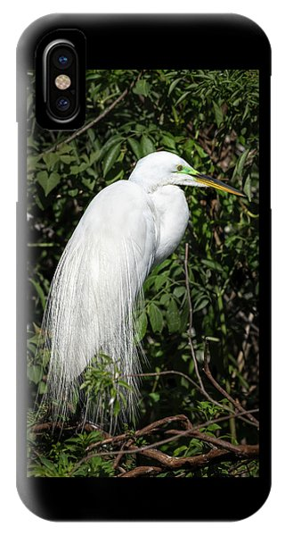 IPhone Case featuring the photograph Great Egret Portrait One by Steven Sparks