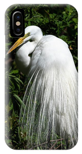IPhone Case featuring the photograph Great Egret Portrait Two by Steven Sparks