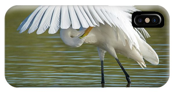 IPhone Case featuring the photograph Great Egret Preening 8821-102317-2 by Tam Ryan