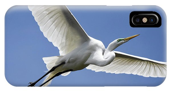Great Egret Soaring IPhone Case