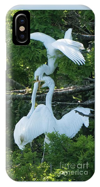 Great Egrets Horsing Around IPhone Case