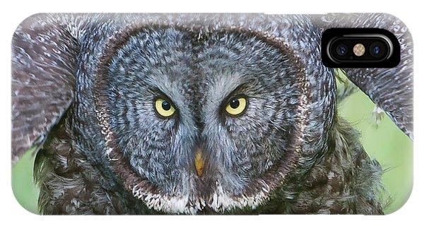 Great Gray Owl Flight Portrait IPhone Case