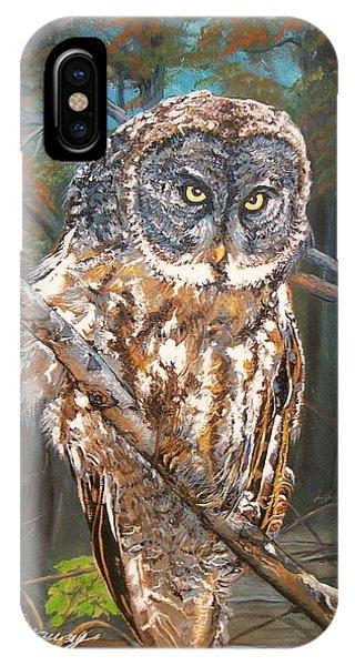 Great Grey Owl 2 IPhone Case