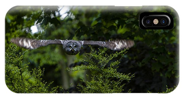 Great Grey Owl In Flight IPhone Case