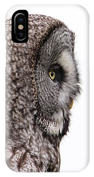 Great Grey's Profile On White IPhone Case