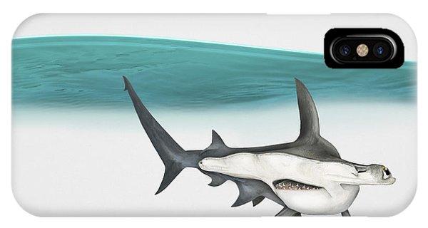 Great Hammerhead Sphyrna Mokarran - Squat-headed Hammerhead Shark - Grand Requin-marteau - Cornuda IPhone Case