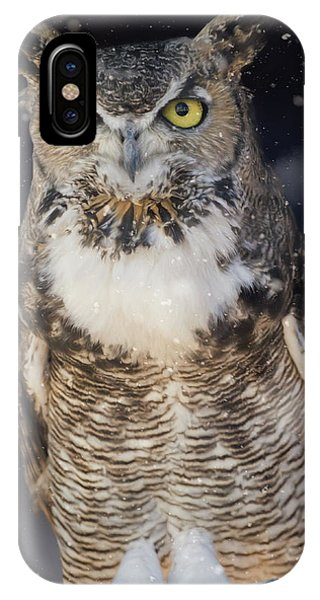 Great Horned Owl In The Snow IPhone Case