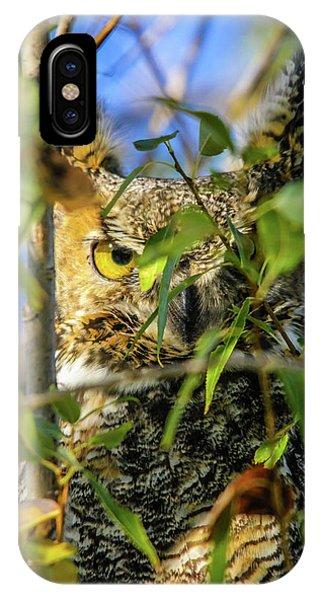 Great Horned Owl Peeking At It's Prey IPhone Case