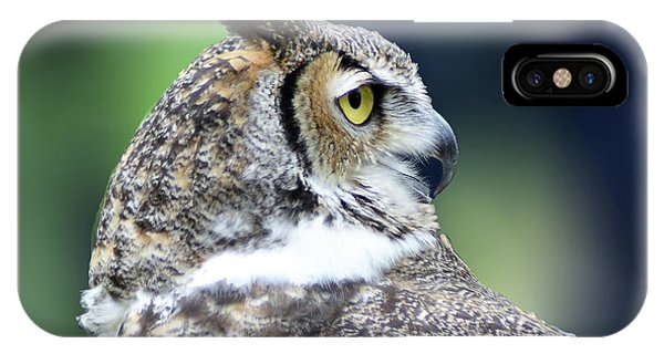 Great Horned Owl Profile IPhone Case
