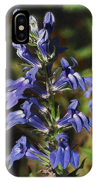Great Lobelia Blues IPhone Case