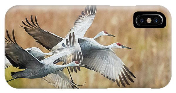 Great Migration  IPhone Case