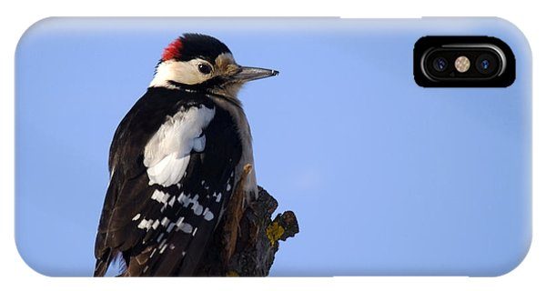 Great Spotted Woodpecker Against Blue Sky IPhone Case