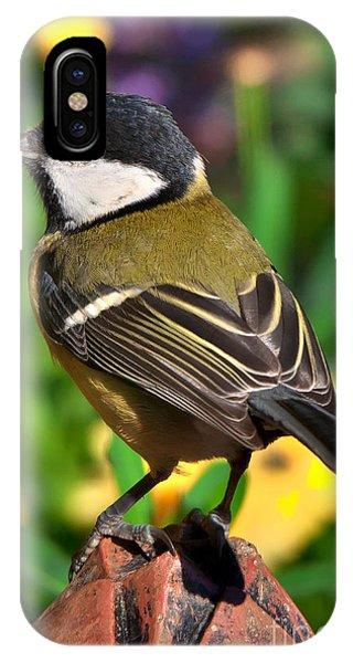Great Tit British Bird Parus Major IPhone Case