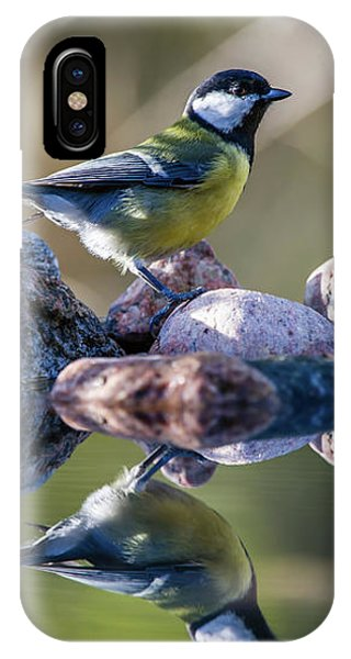 Great Tit On The Stone IPhone Case