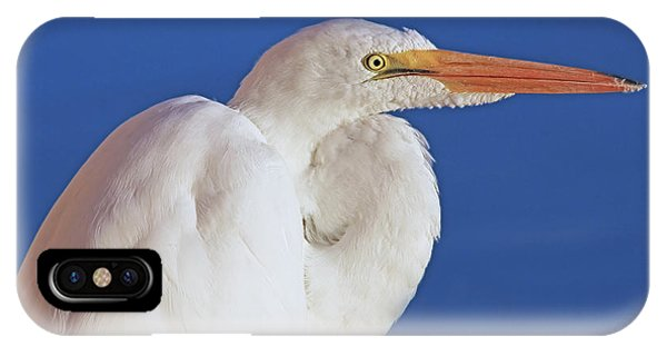 IPhone Case featuring the photograph Great White Egret Bird Portrait by Jennie Marie Schell