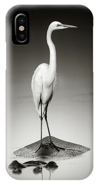 Monochrome iPhone Case - Great White Egret On Hippo by Johan Swanepoel