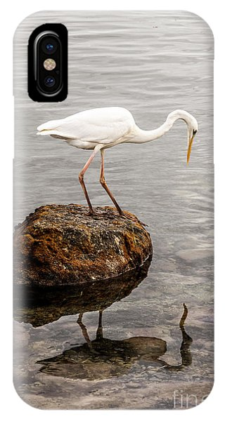 Great White Heron IPhone Case