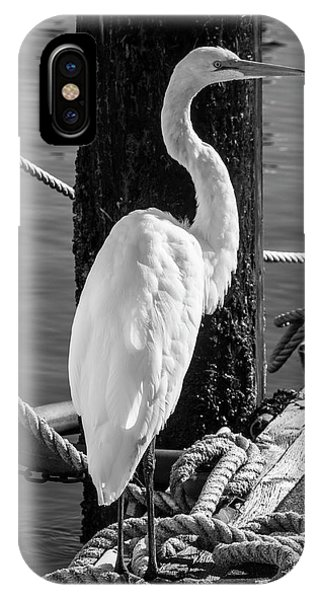 Great White Heron In Black And White IPhone Case