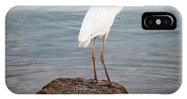 Great White Heron With Fish IPhone Case