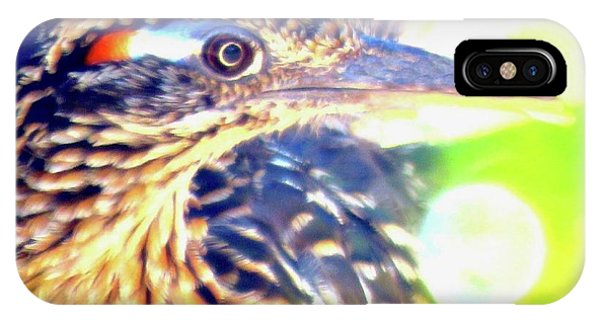 Greater Roadrunner Portrait 2 IPhone Case