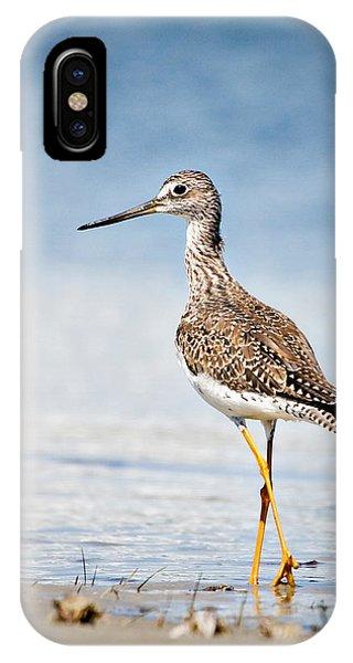 Greater Yellow Legs At Rachel Carson Estuarine Reserve IPhone Case