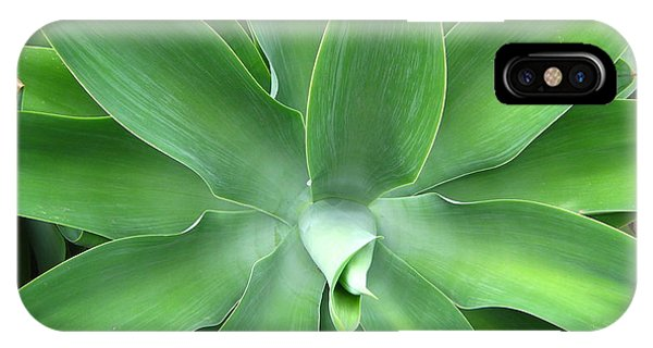Green Agave Leaves IPhone Case