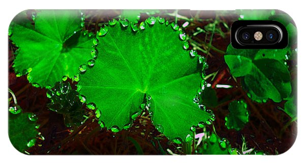 Green And Drops IPhone Case