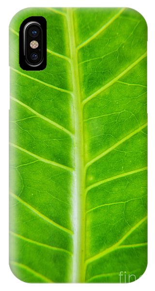 Leave iPhone Case - Green Botany -  Part 2 Of 3 by Sean Davey