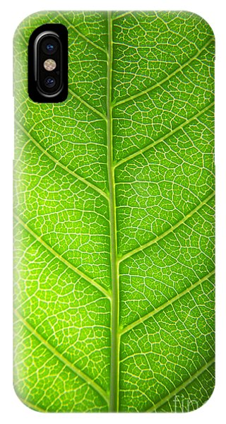 Leave iPhone Case - Green Botany -  Part 3 Of 3 by Sean Davey