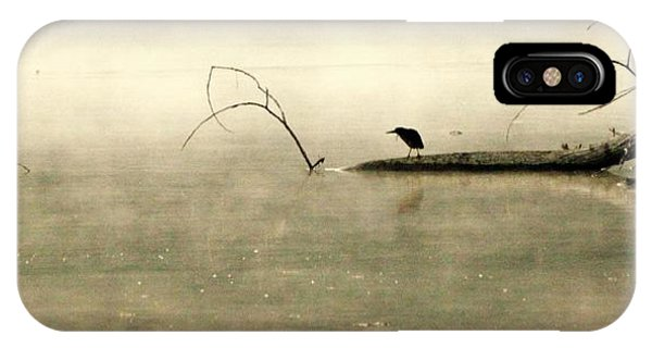 Green Heron In Dawn Mist IPhone Case