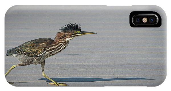 Green Heron On A Mission IPhone Case