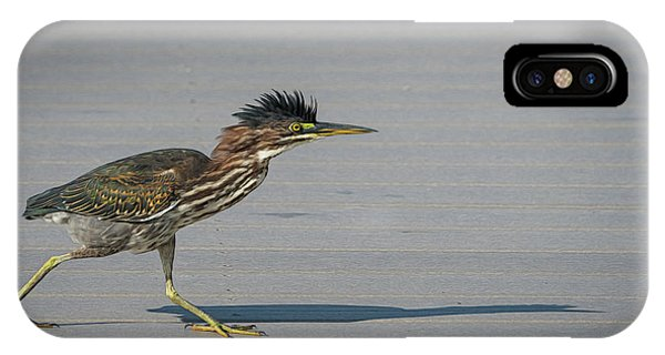 IPhone Case featuring the photograph Green Heron On A Mission by Cindy Lark Hartman