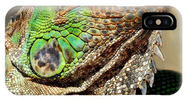 Green Iguana Series IPhone Case
