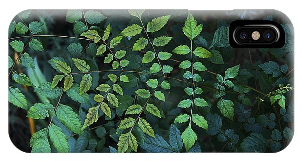 Green Leaves Phone Case by Viktor Savchenko