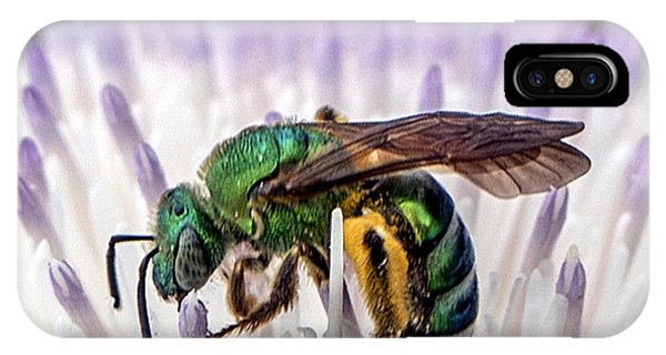 Green Orchid Bee IPhone Case