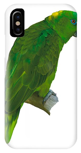Green Parrot On White  IPhone Case