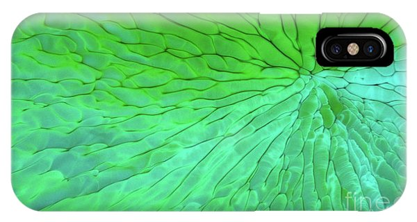 IPhone Case featuring the photograph Green Pattern Under The Microscope by Beauty of Science
