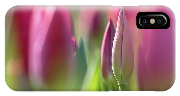 Green Pink Wall Art - Spring Tulips Keukenhof Flower Garden Photography Art Print IPhone Case