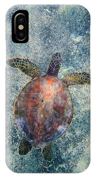 Green Sea Turtle From Above IPhone Case
